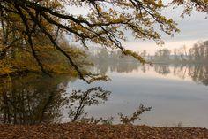 Herbsstimmung über dem Grossweiher (Foto: F. Rutschmann) River, Outdoor, Photos, Outdoors, Outdoor Living, Garden, Rivers