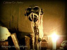 """""""TZANTZA"""" delle isole Salomone  Questa testa rimpicciolita è appartenuta ad uno ei più grandi Shamani melanesiani, il famoso Ukulitiki Manuannu !!!  Quest'essere tra l'umano e il divino , si dice sia vissuto più di mille anni, conoscitore della lingua degli uccelli era lui stesso un uomo uccello.  Nonostante abbia abbandonato la forma umana da circa due secoli, la sua testa continua a mantenere poteri mistici, come da tradizione fanno le reliquie dei santi"""