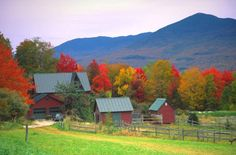 Vermont in the fall, amazing! I will for sure be back.