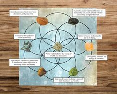 Abundance and Prosperity Crystal Grid Set Fertility Crystals, Prosperity Affirmations, Clear Your Mind, Grid Layouts, Crystal Gifts, Crystal Grid, Clear Quartz, Crystals And Gemstones, Sacred Geometry