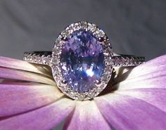 AGL Certified Carat Untreated Violet Ceylon Sapphire in White Gold Diamond Halo Engagement Ring, by JuliaBJewelry Delicate Engagement Ring, Engagement Rings Cushion, Beautiful Engagement Rings, Halo Diamond Engagement Ring, White Gold Rings, White Gold Diamonds, Ceylon Sapphire, Purple Sapphire, 3 Carat