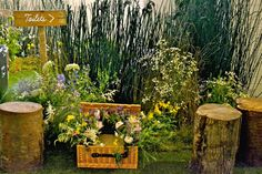 OASIS SPRING SUMMER 2013 PRESS EVENT SET DESIGN BY PETRA STORRS
