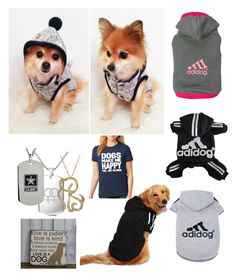 """""""cute!!!!😊🐕"""" by ashalyasam ❤ liked on Polyvore featuring interior, interiors, interior design, home, home decor, interior decorating, Bling Jewelry and SignatureTshirts"""