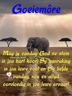 Goeie More, Good Night Quotes, Elephant, Afrikaans, God, Sayings, Movie Posters, Goeie Nag, Dios
