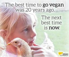 the best time to go vegan Vegan Memes, Vegan Quotes, Vegan V, Why Vegan, News Memes, Vegan Animals, Vegan Lifestyle, Animal Rights, Going Vegan