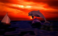 It is related to artistry dolphin prowess animate being art animals graphics artistic production dolphin hd nontextual matter sunset artwork dolphinfish fauna artistic creation. Dolphin Hd, Animal Categories, Sunset Art, Hd Images, This Is Us, Animation, Wallpaper, Artwork, Artist