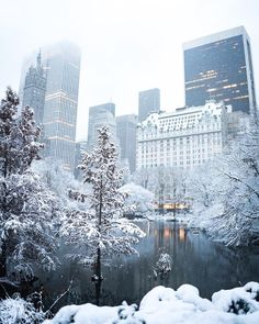 Snow covered Central Park in NYC New York City Manhattan. Central park after a winter blizzard snow storm. The post Snow covered Central Park in NYC New York City Manhattan. Central park after a w… autumn scenery appeared first on Trendy. City Aesthetic, Travel Aesthetic, New York Noel, Wallpaper Natal, New York Wallpaper, Photographie New York, New York Weihnachten, New York Landmarks, Winter Szenen