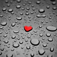 I love rain. Love Rain, Heart In Nature, Heart Art, I Love Heart, Happy Heart, Lonely Heart, Red And Grey, Black And White, Black Widow