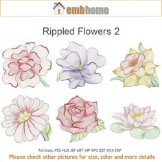 Rippled Flowers 2 Machine Embroidery Designs Pack Instant Download 4x4 5x5 6x6 hoop 12 designs SHE5155