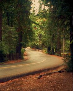 Santa Cruz Mountains | Felton, California ~ Santa Cruz Mountains | Flickr - Photo Sharing!