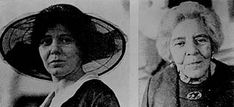 Conversations with Alice Paul: Woman Suffrage and the Equal Rights Amendment Equal Rights Amendment, Alice Paul, Technical Writing, Oral History, American Dad, School Projects, Equality, Woman, Social Equality