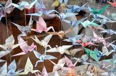 hmm... that's a fun idea of displaying paper cranes. I might have to do that. but mine are of varying sizes. lol.