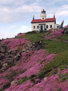 Battery Point Lighthouse, Crescent City California.