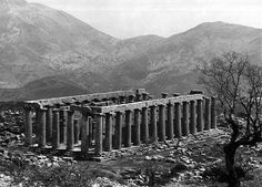 CLASSICAL COMMENTS: THE TEMPLE OF APOLLO EPICURIUS AT BASSAE AND ITS ORDERS | Classicist Blog