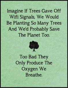If Wifi grew on trees.