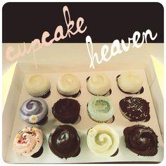Magnolia Bakery cupcakes!