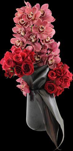 Valentine Enchantment | Winston Flowers Tall Flowers, How To Wrap Flowers, Beautiful Flowers, Flower Wrap, Funeral Flower Arrangements, Orchid Arrangements, Funeral Flowers, Winston Flowers, Modern Floral Design