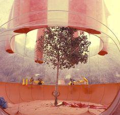 Instant City, 1971 - José Miguel de Prado Poole