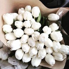 Perfect tulips for early spring wedding! My Flower, Fresh Flowers, Beautiful Flowers, Deco Floral, Arte Floral, White Tulips, White Flowers, White Roses, No Rain