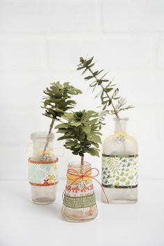Paper Botanical Plants