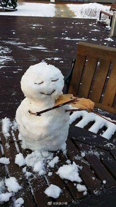 Nihal Buyukeroglu-Love Classical Music I Love Winter, Winter Fun, Winter Holidays, Spiderwick, Ice Art, Snow Much Fun, Snow Art, Majestic Animals, Text On Photo