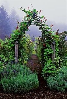 Garden Arbors and Arches to Give an Entry to Your Garden Setting Vegetable garden arbor. What a way to enter the garden. See more ideas thegardeningcook. The post Garden Arbors and Arches to Give an Entry to Your Garden Setting appeared first on Garten.