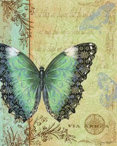 Royal Tapestry Butterfly-B Digital Art by Jean Plout - Royal Tapestry Butterfly-B Fine Art Prints and Posters for Sale Vintage Butterfly, Butterfly Art, Green Butterfly, Butterfly Wallpaper, Vintage Cards, Vintage Paper, Vintage Pictures, Vintage Images, Stencil