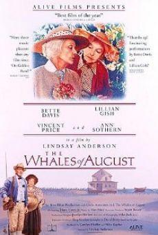 Las ballenas de agosto - Peliculas Online
