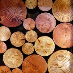 Fireplace Decorative Logs.