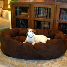 Just Found This Large Dog Bed Oversized Horseshoe Bolster With Memory Foam Orvis On Beds Pinterest Bedemory