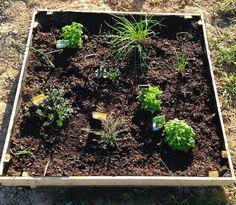 Fabriquer un carré potager pour aromates avec une palette - DIY bricolage et green