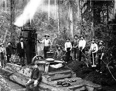 "loggers with steam ""donkey"""