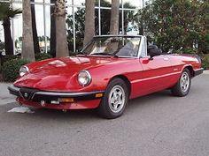 Alfa Romeo : Alfa Romeo Spider Veloce dream-ride