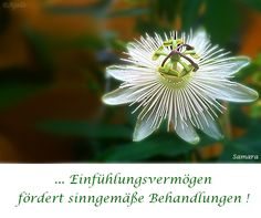 ... #Einfühlungsvermögen fördert sinngemäße Behandlungen !