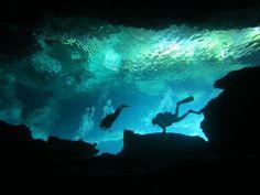 Cenotesdiving8349