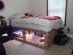 Indoor tortoise pen idea; no credit for picture or guinea pig cage