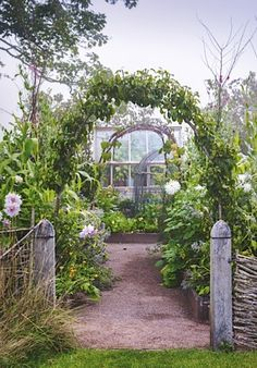 In the final instalmentfrom his series, designer Arne Maynard observes growth in his garden slowing down and shares his…
