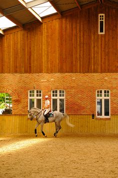 Indoor arena with wood kick wall, brick, wood siding, and steel clear span structure