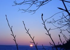 Mackenzie River Sunset by In Focus Photography, via Flickr