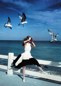 """""""No one is free, even the birds are chained to the sky."""" — Bob Dylan"""