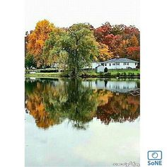 Connecticut  Pic of the Day 09.29.15  Photographer @navy4g  Congratulations! ✨ #scenesofCT #danburyCT  #newengland_foliagereport  #pond #fallfoliage #leafpeepers #reflection_shotz #loves_reflections #ctstateofmind #ctvisit  #igersct #ig_newengland #newengland