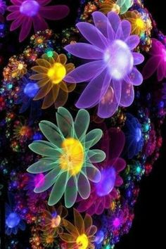 Flowers of a Different Color, is this real Love Wallpaper, Colorful Wallpaper, Wallpaper Backgrounds, Iphone Wallpaper, Fractal Images, Fractal Art, Fractal Design, Doodle Art, New Art