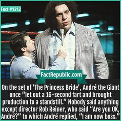 """André the Giant Fart-On the set of 'The Princess Bride', André the Giant once """"let out a fart and brought production to a standstill."""" Nobody said anything except director Rob Reiner, who said """"Are you OK, André?"""" to which André replied, """"I am now boss. True Love Stories, Love Story, World Championship Wrestling, Andre The Giant, Are You Ok, 3 Movie, Unbelievable Facts, Professional Wrestling, Say Anything"""