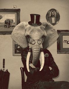O Elefante by Murilo Morais. This one is for our Alabama Fans!