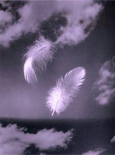 Feader Veren Veer Angel