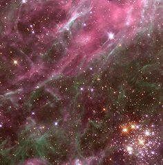 Hodge 301 è un ammasso aperto visibile nella Grande Nube di Magellano, nella costellazione del Dorado.