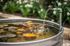 Water features can help turn your landscape into something special, providing a focal point and attracting wildlife. Dive into these water features and come up with some great ideas for your own backyard.