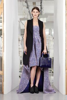 Christian Dior Pre-Fall 2013 Fashion Show