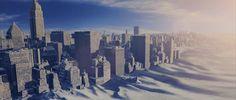 Isbjörnar invaderar New York under den amerikanska köldvågen ...