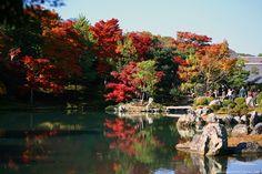 Япония,  В получасе езды от Киото есть потрясающее место – Арасияма. Район Арасияма расположен вокруг одноименной горы. Площадь парков с храмами очень большая и для прогулок и знакомства с местными красотами можно смело отвести весь день. Тем более что в это время около 16 часов уже темнеет.
